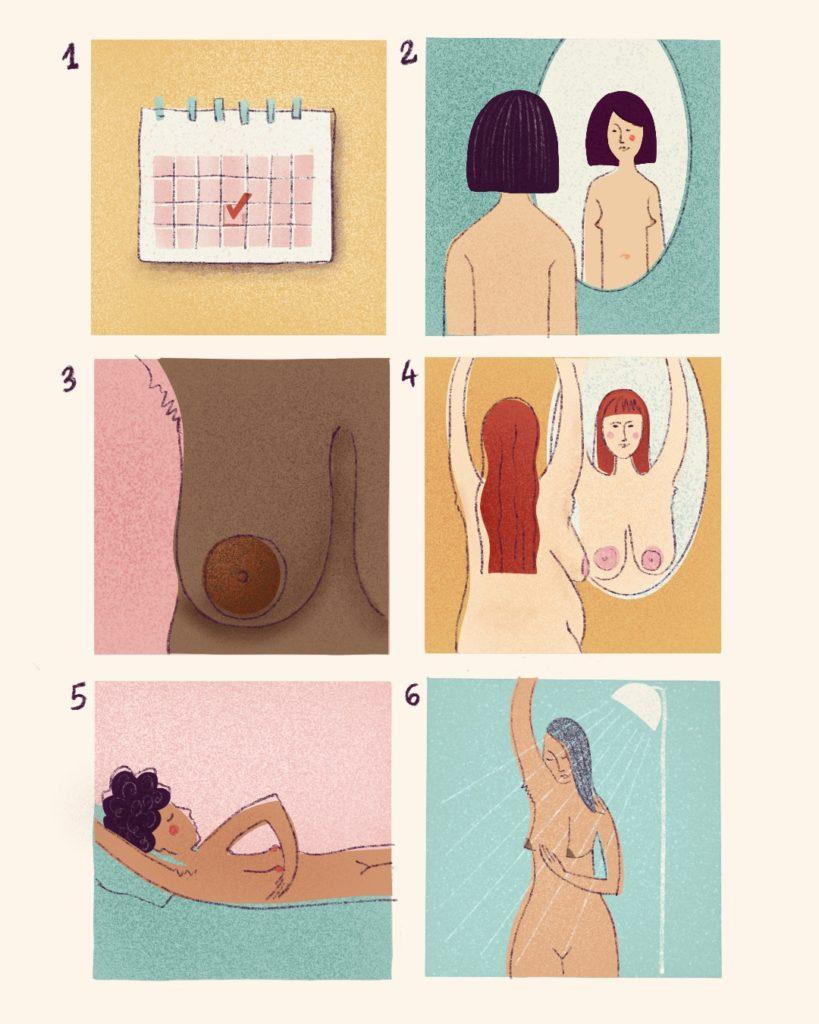 6 steps of breast self-exam